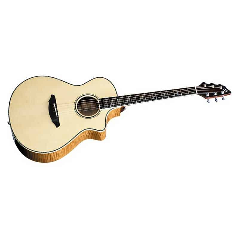 Breedlove Stage C250EF