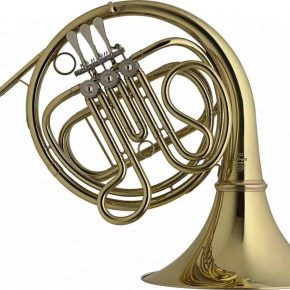 Stagg 77FHF French Horn
