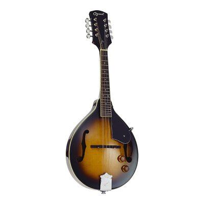 Ozark 2077 Mandolin