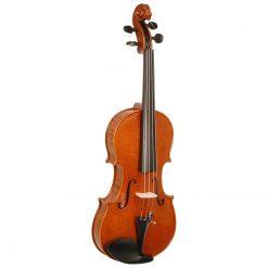 Stentor Arcadia Violin