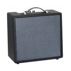 Ashbury AA-G10-NL Amp