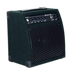 Ashbury Viking Bass Amp