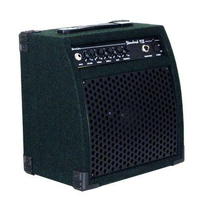 Ashbury Viking Bass Amp