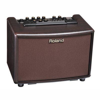 Roland AC33RW Acoustic Amplifier