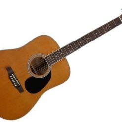 Hudson HD1 Guitars @ The Sound Shop Drogheda