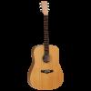 Tanglewood TWR2D Guitar @ The Sound Shop Drogheda