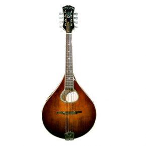weber-bridger-mandolin