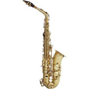 Stagg Alto Saxophone WSAS215