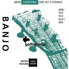 Galli G210 - 5 string banjo set