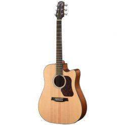 Walden D550CE Dreadnought Acoustic Guitar