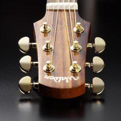 Walden G630CE Grand Auditorium Acoustic Guitar