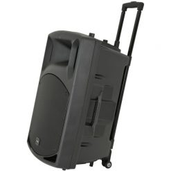 QTX QX15PA-Plus 15'' PA Speaker With Wireless Microphones